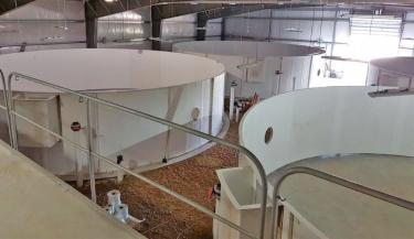 12 Meter Tanks